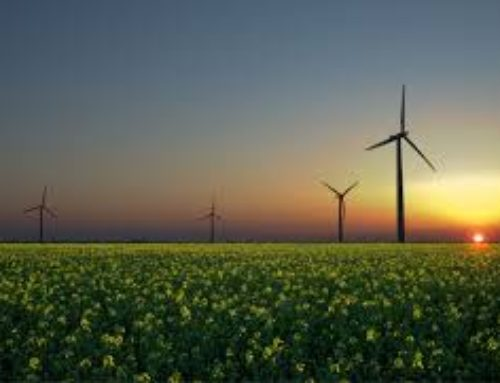 Australian Energy Regulator seeking expressions of interest for Consumer Challenge Panel members