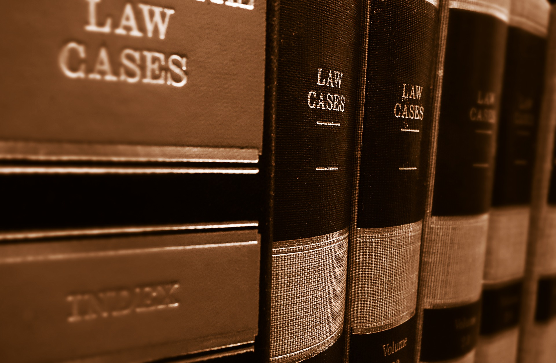 A series of books titles 'law cases' on a shelf